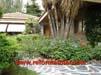 hogar-y-jardin-servicios.jpg