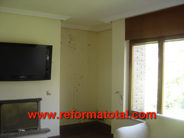 Reparar pared con humedad affordable reparar pared con - Reparar y pintar paredes ...