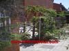 jardineria-trabajos-chalets
