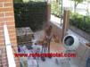 albanil-construcciones-trabajos